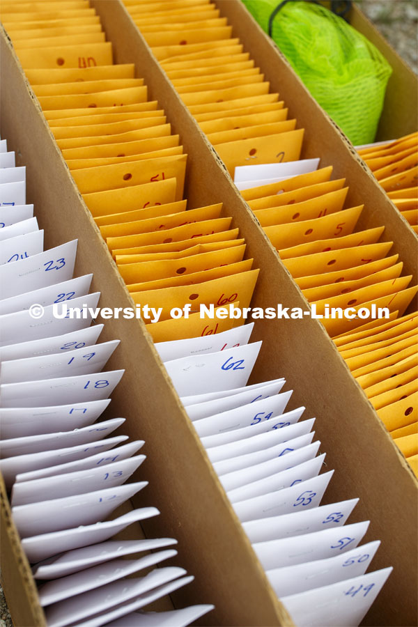Packets of seeds are ready to plant. James Schnable corn research group plants at agronomy fields at 84th and Havelock in northeast Lincoln. Schnable's lab studies grain DNA to find the best varieties for breeding and genetic modification to help with traits including yields and drought resistance. The 2.5-acre plot was being planted with 752 genotypes in 1680 precisely randomized plots. To plant those plots along with a check genotype, the researchers used 1860 packets of seeds manually poured into a hopper every 7 seconds while sitting atop a custom research planter. May 6, 2020. Photo by Craig Chandler / University Communication.