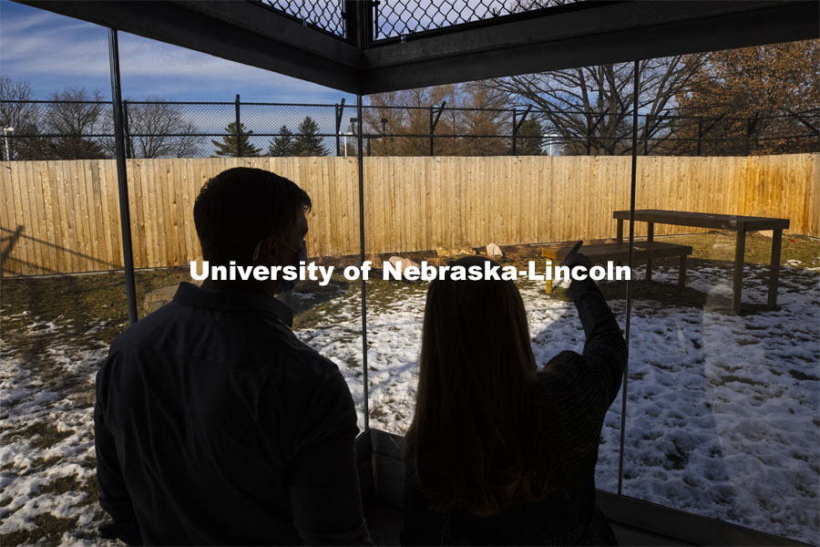 Haley Beer and Lincoln Zoo veterinarian Dr. Trenton Shrader discuss Bella, a 10-year-old female cheetah, and the cheetah habitat at the zoo. Haley Beer is using a camera system and machine learning to track animal movements including the cheetahs at the Lincoln Zoo. December 18, 2020. Photo by Craig Chandler / University Communication.