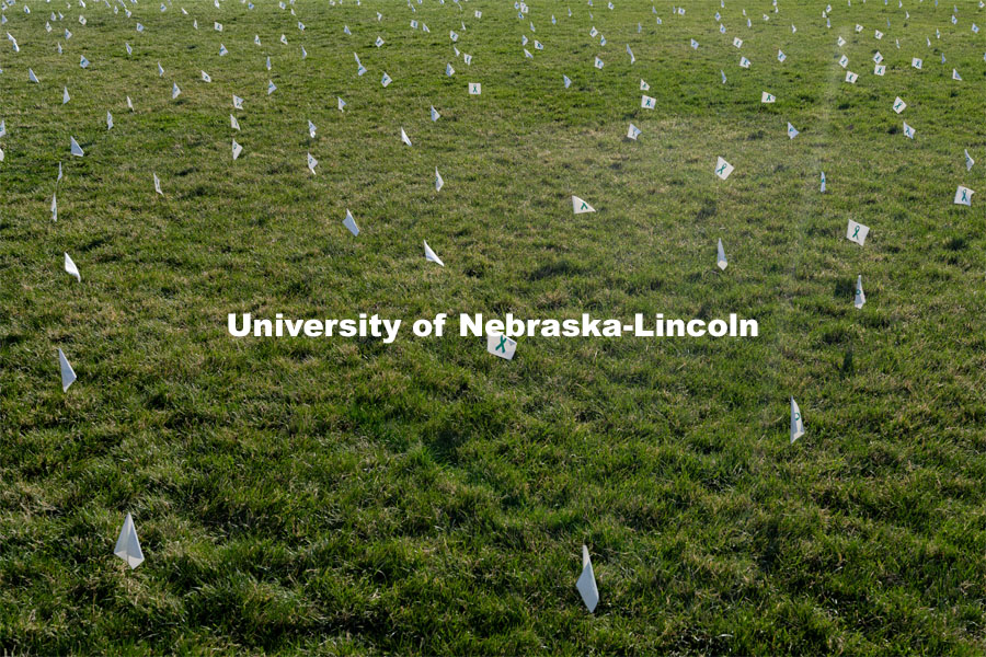 Flags are spread across the Nebraska Union Greenspace. Flags and signs are placed in the Nebraska Union Greenspace to promote Sexual Assault Awareness Month. April 4, 2021. Photo by Jordan Opp for University Communication.