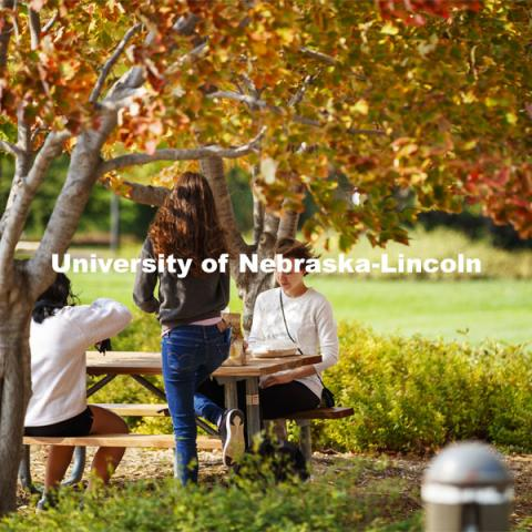 Students grab a bite to eat under the trees on City Campus. October 5, 2020. Photo by Craig Chandler / University Communication.
