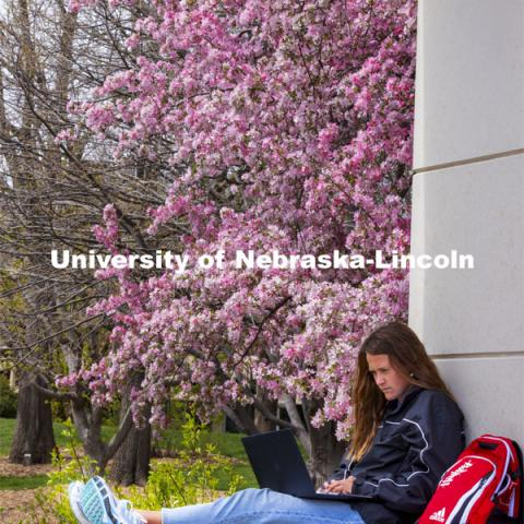 Audrey Freyhof, a junior from Hamilton, Michigan, studies amongst the flowering trees on the ledge of the Meier Commons. Spring on City Campus. April 15, 2021. Photo by Craig Chandler / University Communication.